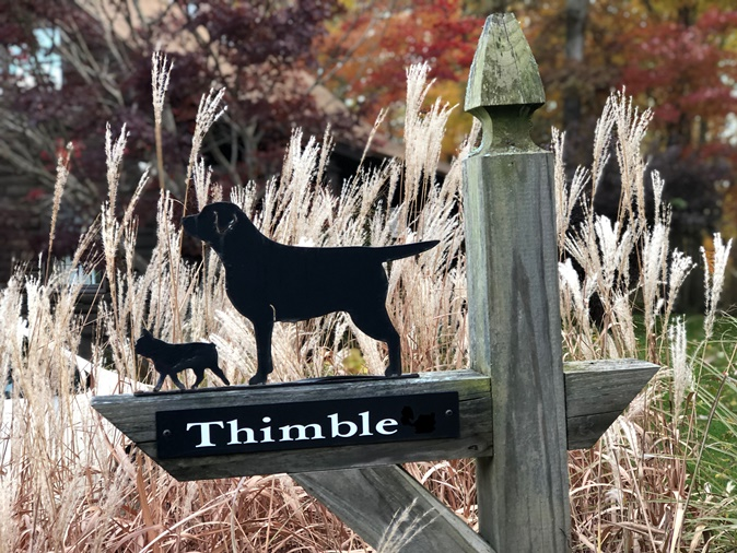 Thimble Labradors